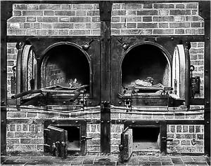 Krematorieugn